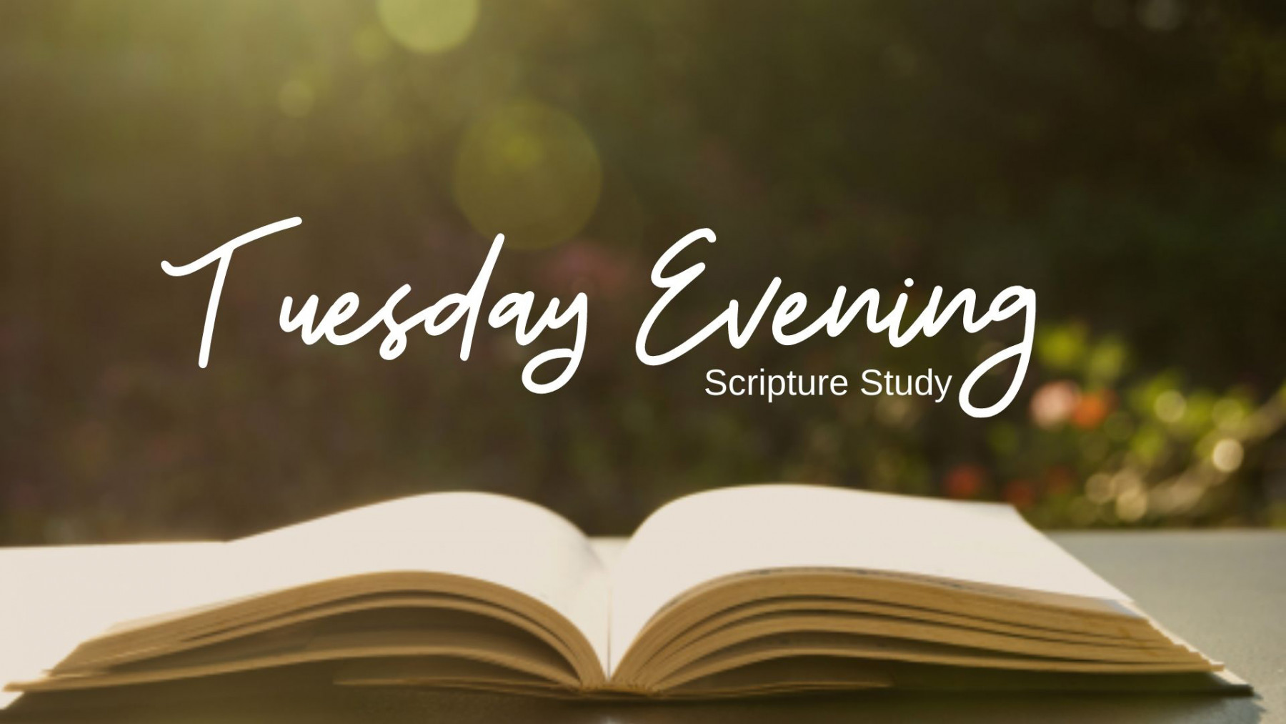 Tuesday Evening Scripture Study