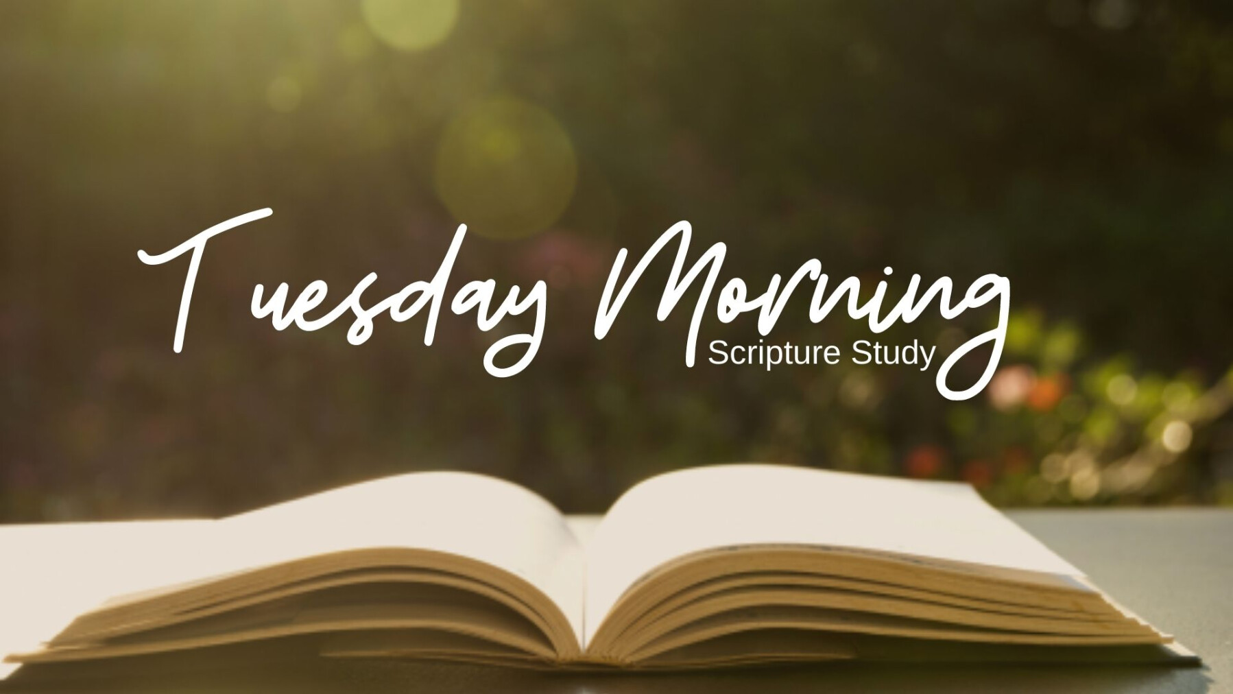 Tuesday Morning Scripture Study